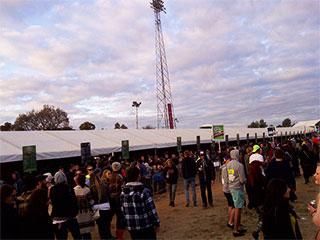 Festival Bar Crowd